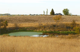 Upland Hunting Preserve Grounds Riverside IA