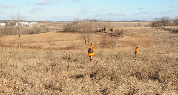 Highland Hideaway HuntingDaily Iowa Pheasant Hunts ...